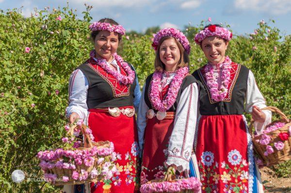 Visit The Rose Festival
